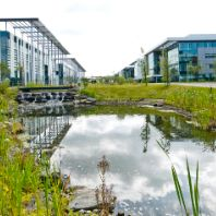 Shelborn snaps up Maxim Office Park for €43m (GB)